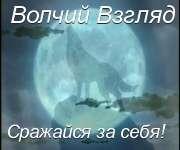 http://img819.imageshack.us/img819/6923/55993720a5350f8m3.jpg